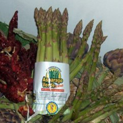 Green asparagus from Altedo - Comune di Malalbergo